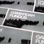 В Черновцах 12 марта выступит группа Gamardah Fungus