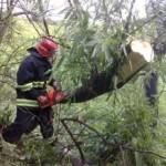 В Кицмане срывало крыши, а на Новоселиччині подтопило дома