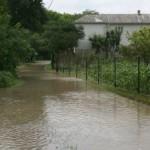 Вода уничтожает урожай
