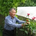 Комарівчанин вырастил ботанический сад в собственном дворе