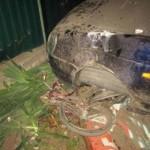 Под Киевом водитель Ваза насмерть сбил двух детей