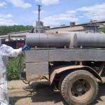 На Новоселиччині за африканской чумы сжигают свиней
