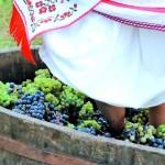 «Берегфест» – самый яркий фестиваль осени