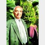 А у него цветут бананы…