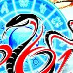 В год Черной Змеи, как и это пресмыкающееся, хватайтесь за каждую неожиданную возможность…